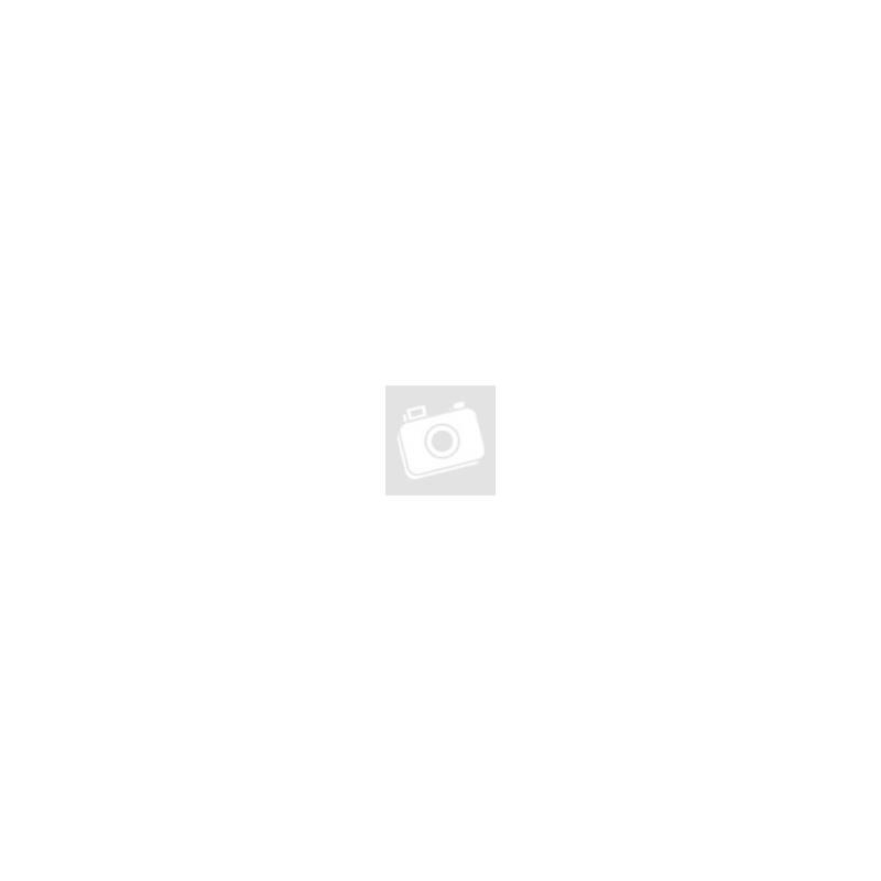 Bőr pénztárca, mini, álló, csatos, kártyatartós, fekete, Choice